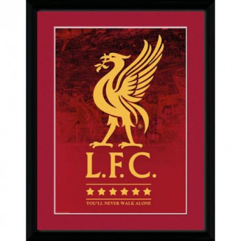 FC Liverpool obrázek v rámečku Picture Crest & Stars 16 x 12