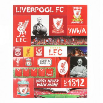 FC Liverpool magnety Fridge Magnet Set