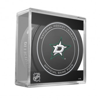 Dallas Stars Puk Game Replica 2013