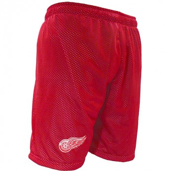 Detroit Red Wings Trenky Mesh