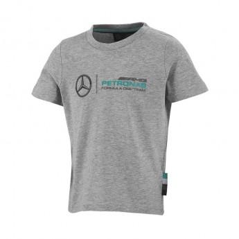 Mercedes AMG Petronas dětské tričko logo grey F1 2016