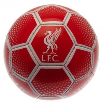 FC Liverpool fotbalový míč Football DM