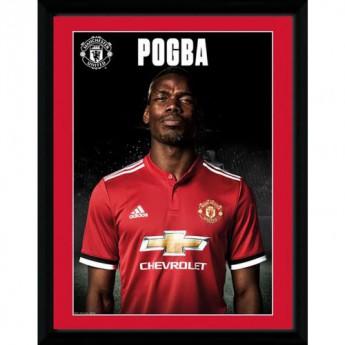 Manchester United obrázek v rámečku Pogba Profile 16 x 12
