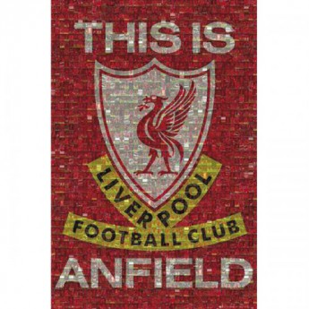 FC Liverpool plakát Mosaic 39