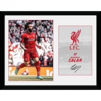 FC Liverpool obrázek v rámečku Salah 16 x 12